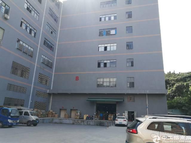 凤岗新出五楼1400平米带办公室带地坪漆带缷货平台标准厂房