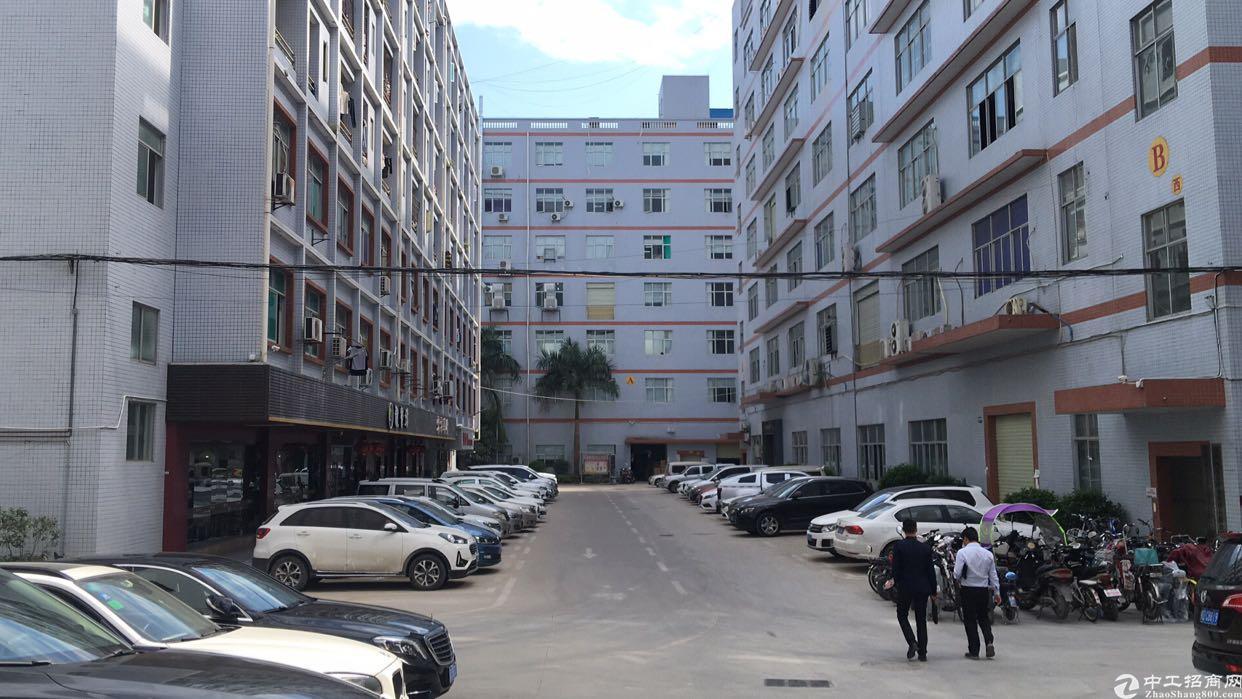 龙华大浪商业中心旁精装修厂房出租免转让费