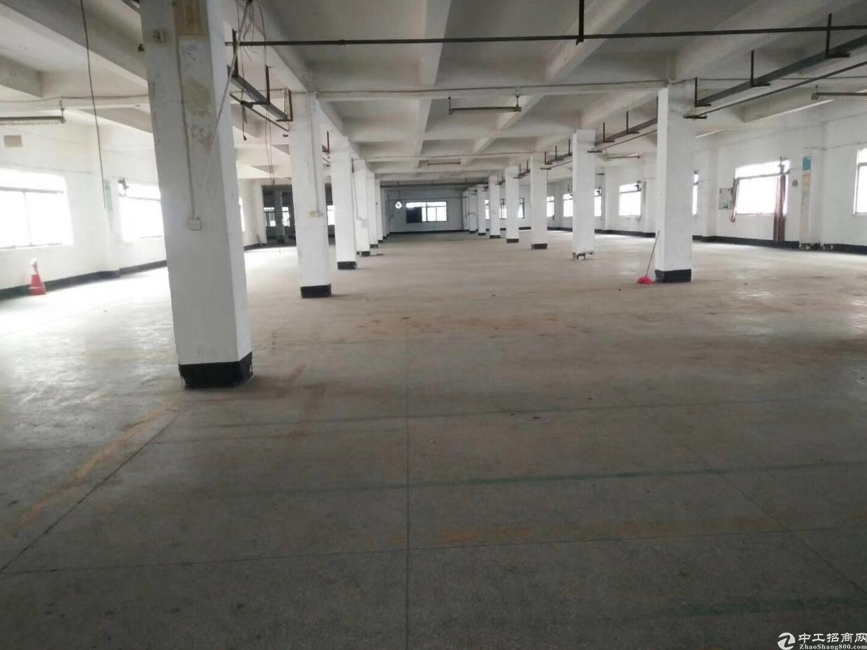 松岗广田路边上新出楼上整层大小分租厂房