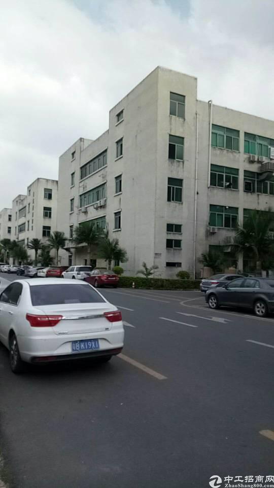 坂田主干道边2000平方带精装修厂房出租