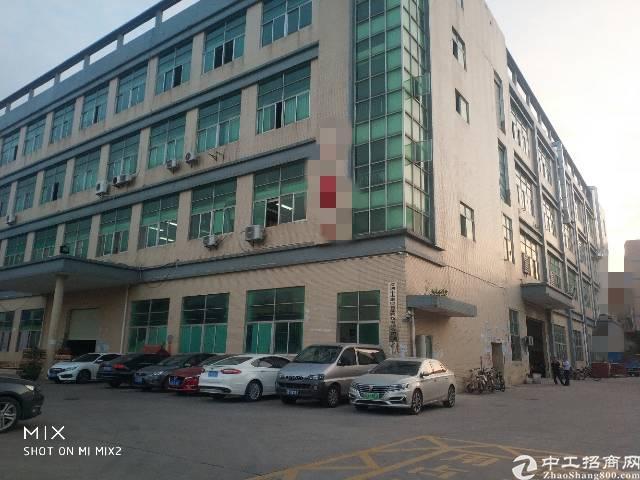 观澜松元新出楼上一整层4300平,精装修厂房出租