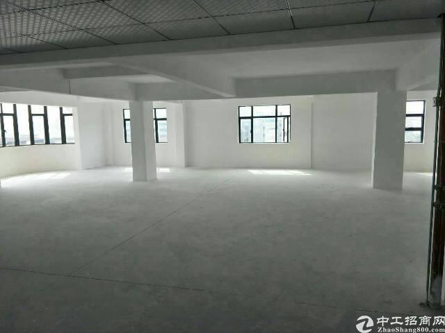 长安涌头新出原房东独院厂房20000平方,大小可分