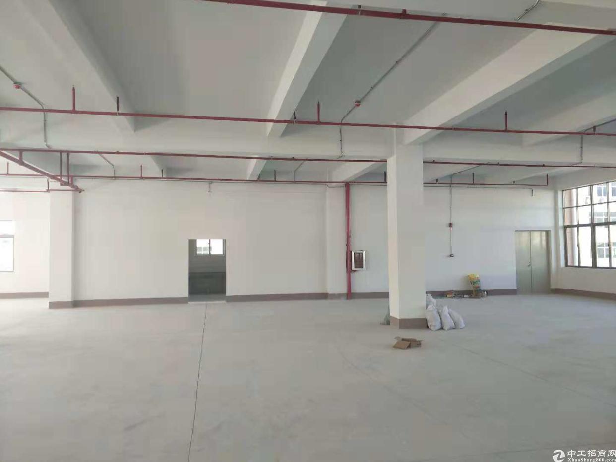工业园区全新标准红本厂房