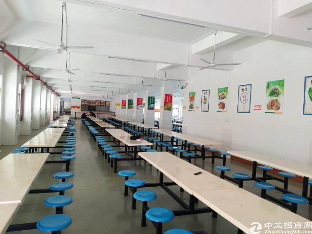 观澜桂花小学对面斜坡上去一楼厂房招租-图2