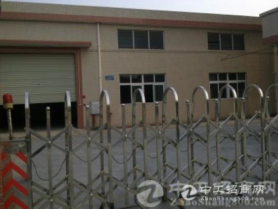 厚街寮夏村新盘播报:单一层厂房面积1100平+150平空地大