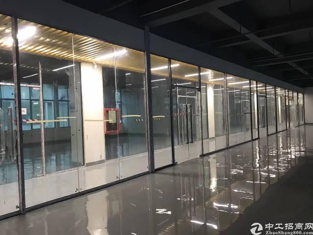 坂田杨美地铁站新出488平带装修办公室出租