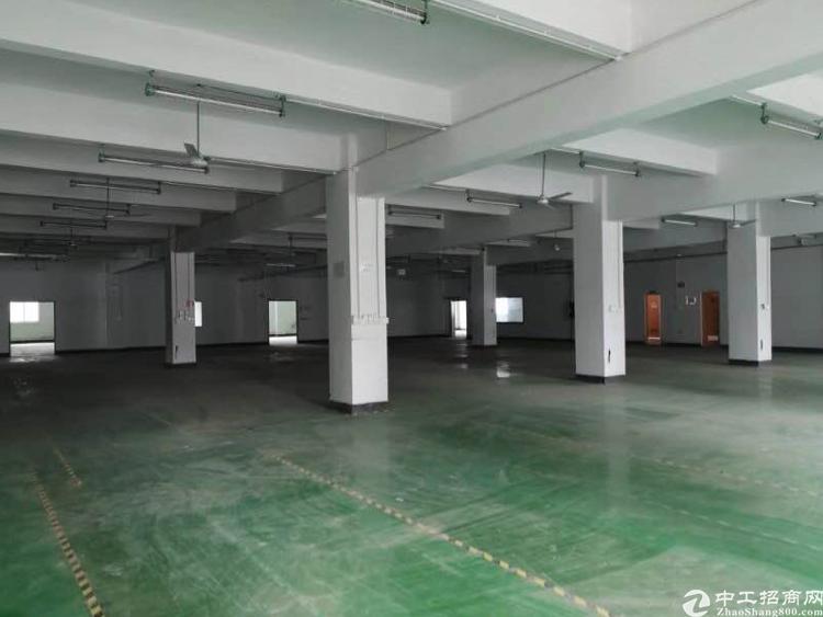 龙华福龙路50米新出楼上2300平,合同可签5年。