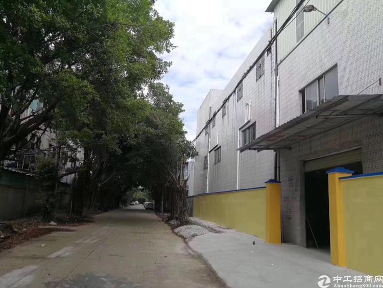 清溪新出超便宜独门独院厂房三层约5000平,只租15块