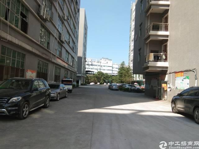 观澜章阁大型工业园内新出楼上带装修厂房700平方出租