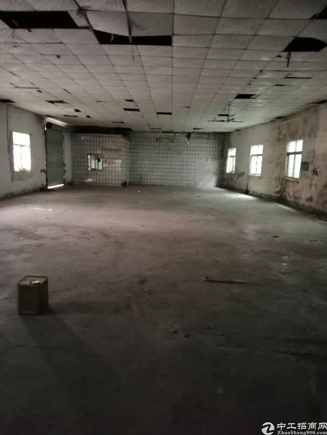单一层1300平米独院5米钢构,16元/平米