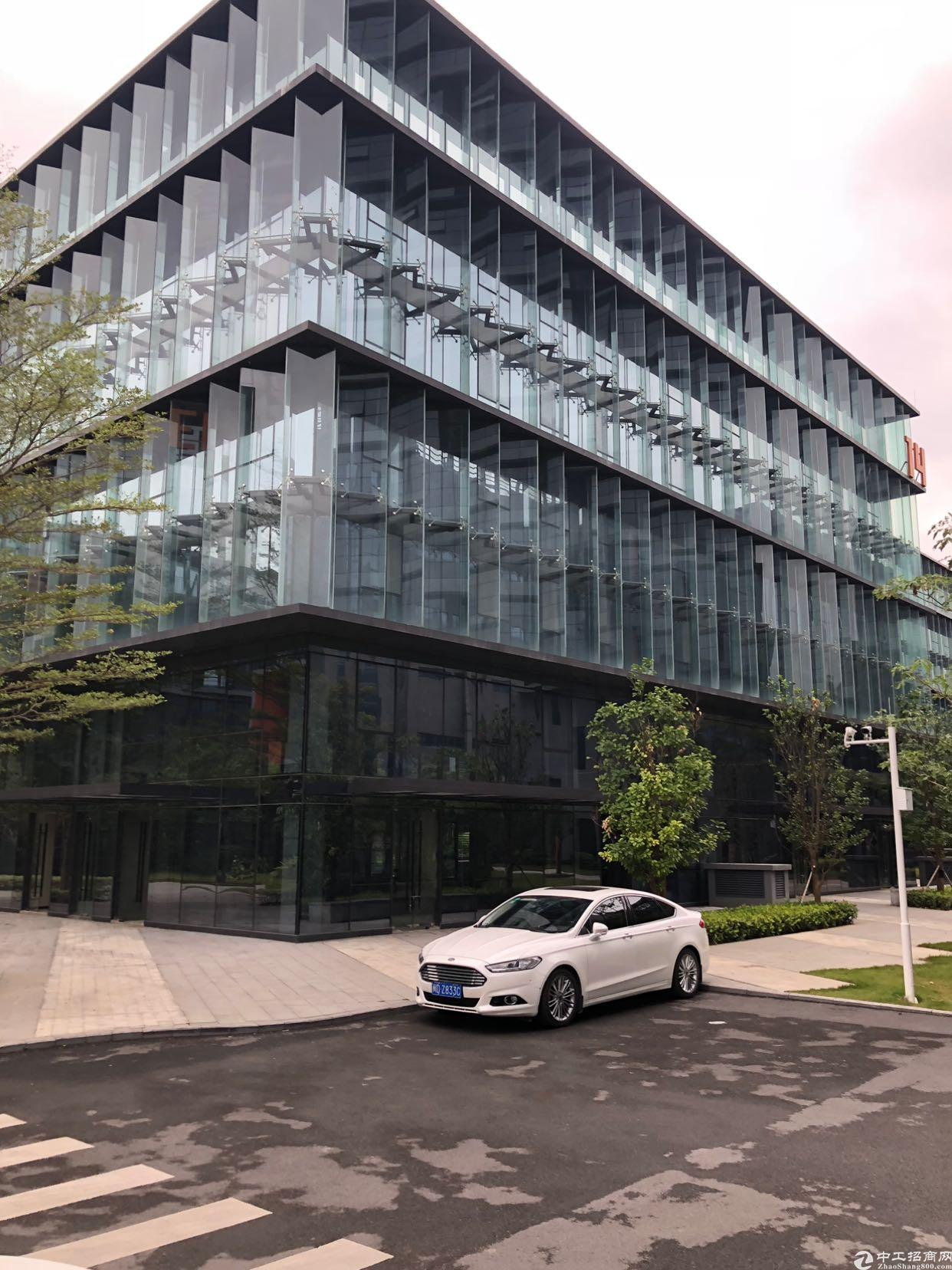 坂田豪华电商产业园出租大小面积