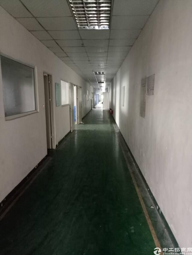 观澜松元新出楼上500平带装修厂房出租