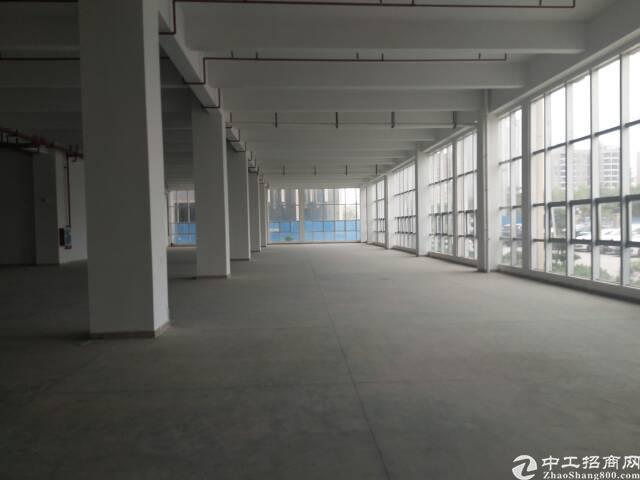 秋长大亚湾淡水更多精品厂房出租惠州市惠阳区