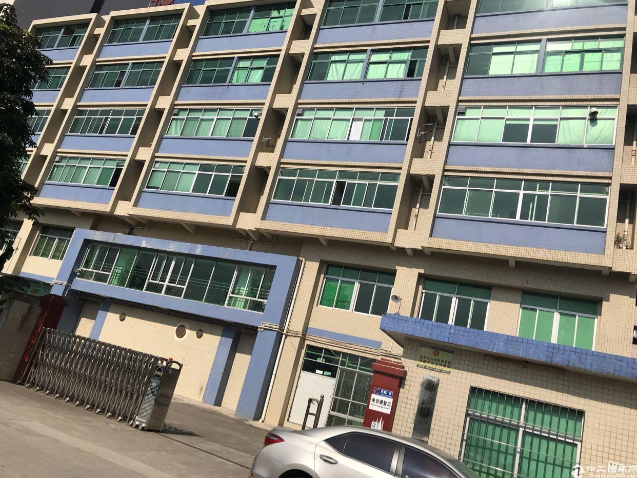 龙岗中心城,原房东红本独院4000平方,可分租可办环评