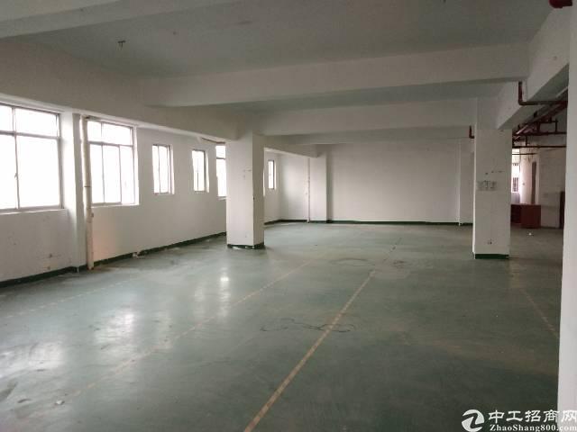 观澜松元厂房五楼500平出租,租金每平20。