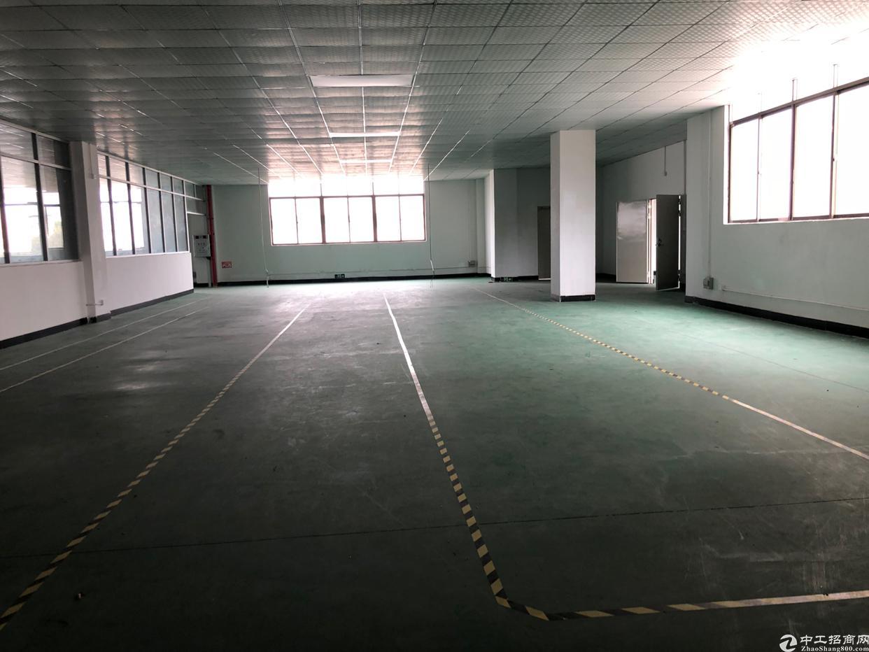 黄江镇标准厂房二楼招租1300