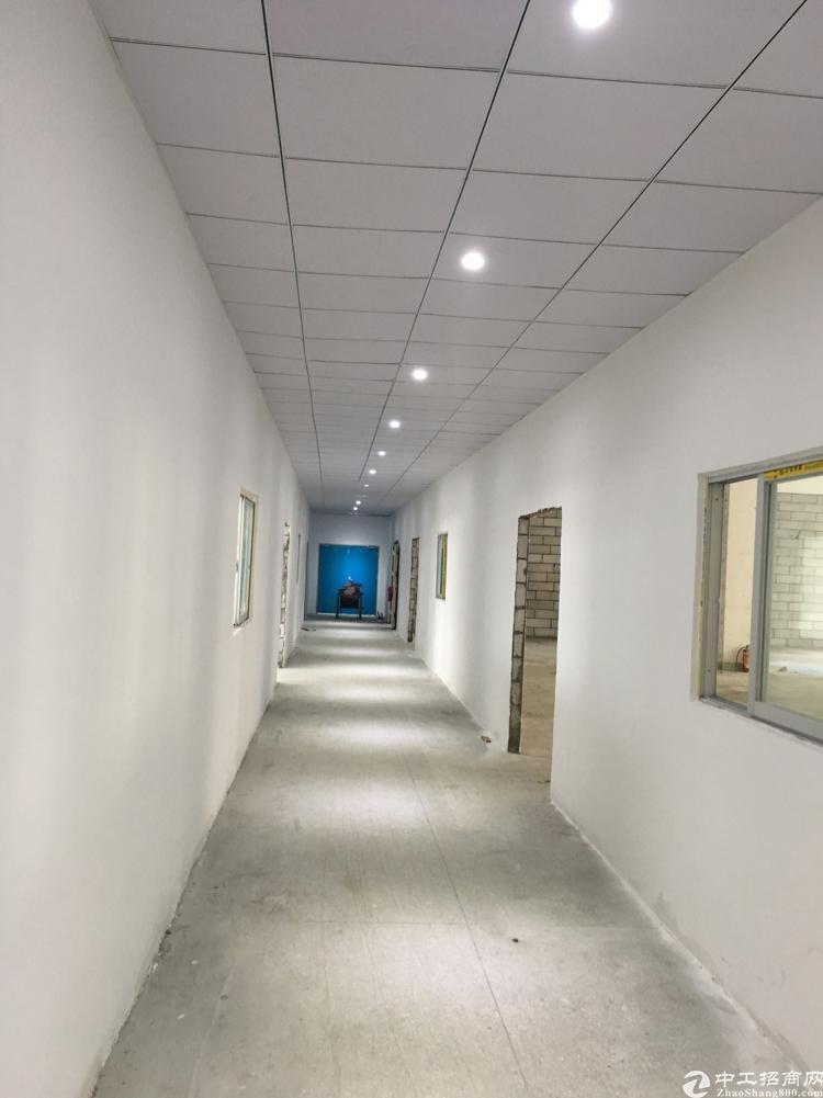 新出200平包阁墙大型园区厂房