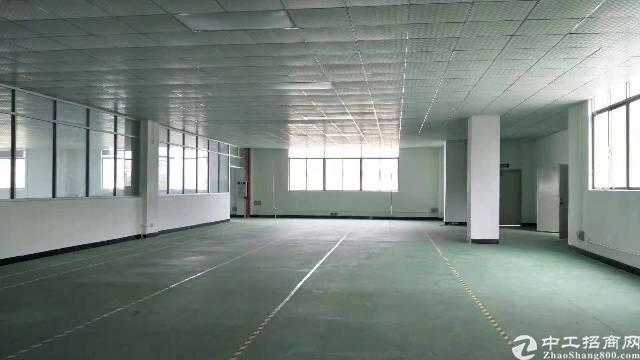 石岩北环新出精装修厂房出租!800平方!