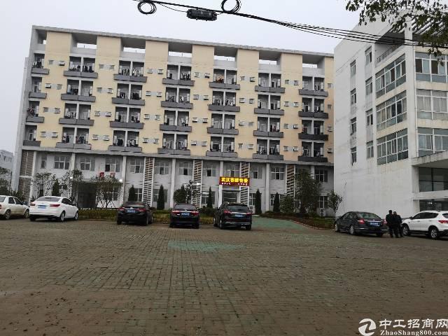 汉南沌口开发区地铁站办公研发厂房招商