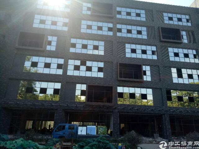 布吉木棉湾新装修1栋厂房8000平