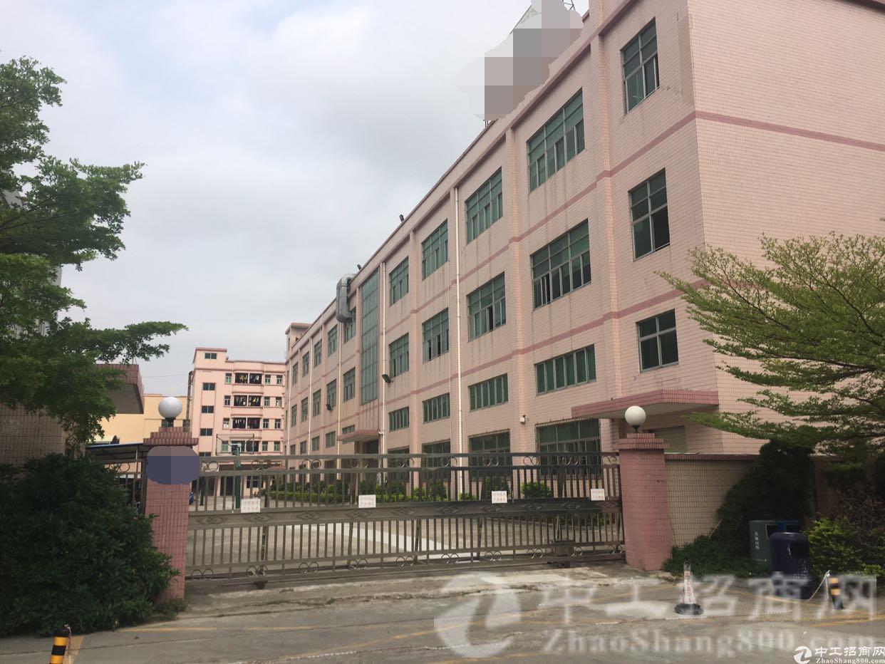 厚街镇宝屯工业园出租标准重工业厂房1000平方高六米配套齐全