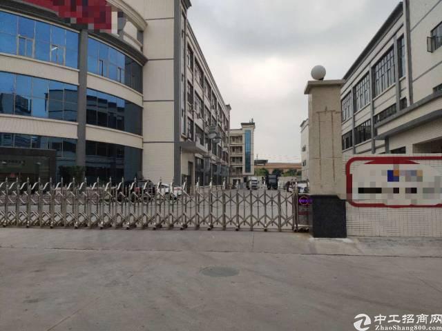 企石出租8000平方原房东独院标准厂房