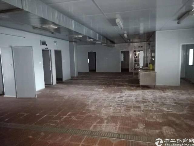 布吉海吉星旁新出楼上带冻库厂房1150平出租