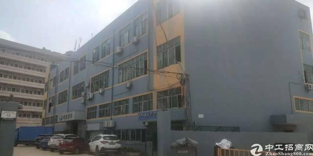 沙井国道边楼上厂房,整层1000平,面积实在,合同3~5年,