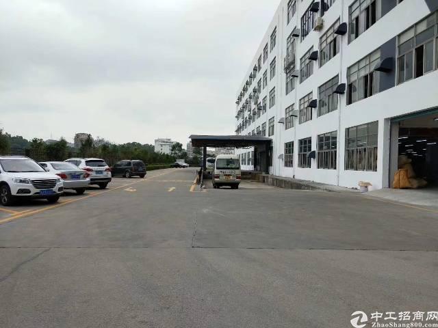 坂田2200平红本带消防喷淋卸货平台5吨货梯厂房招租可分租