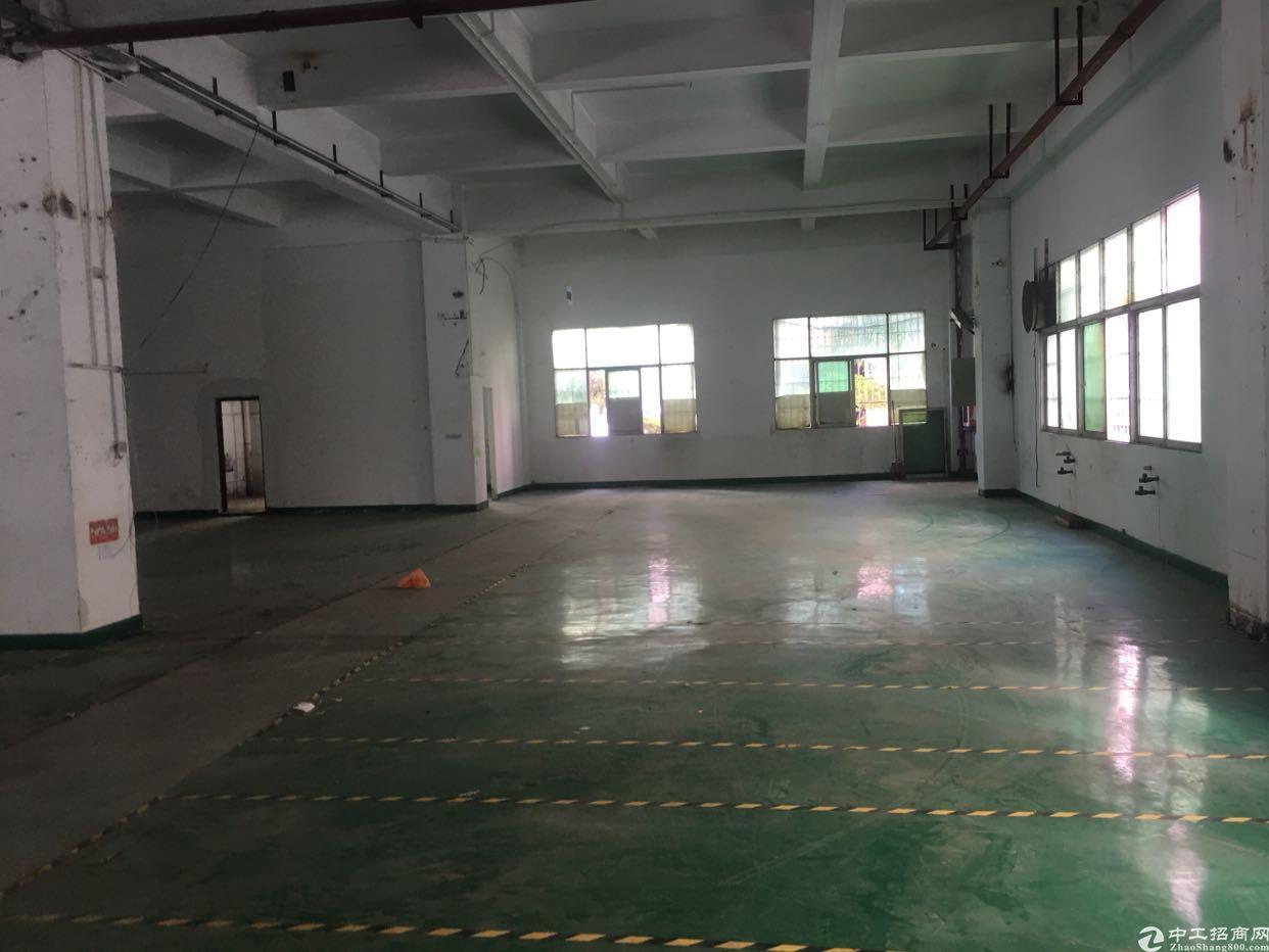 福永塘尾原房东厂房出租1600平有装修1楼靠宝安大道