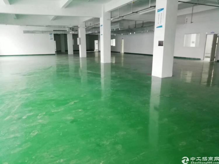 观澜福民新出独院标准厂房,1200平,租24,园区形象好,