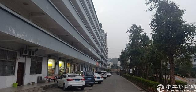 龙华新区大浪服装基地旁边楼上精装厂房600平低价出租