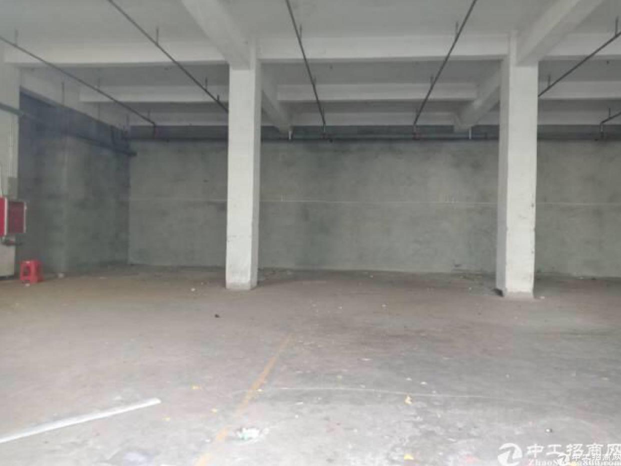 南岭可园旁新出1000平1楼厂房,带喷淋,格局方正,好停车