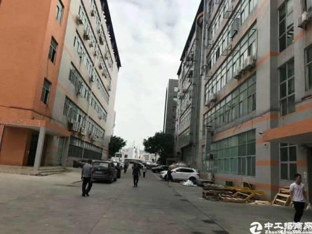 坂田吉华路旁新出带卸货平台2100平一楼厂房可分租