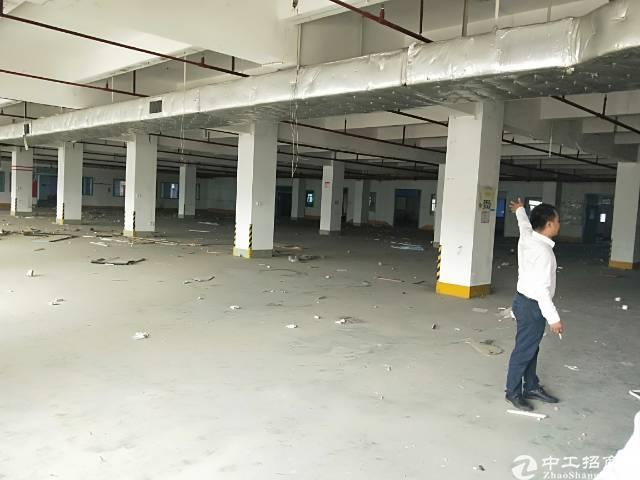 横岗安良新出村委厂房一楼1500平出租