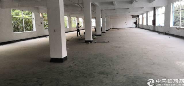 龙华东环一路独门独院厂房三层可以分租