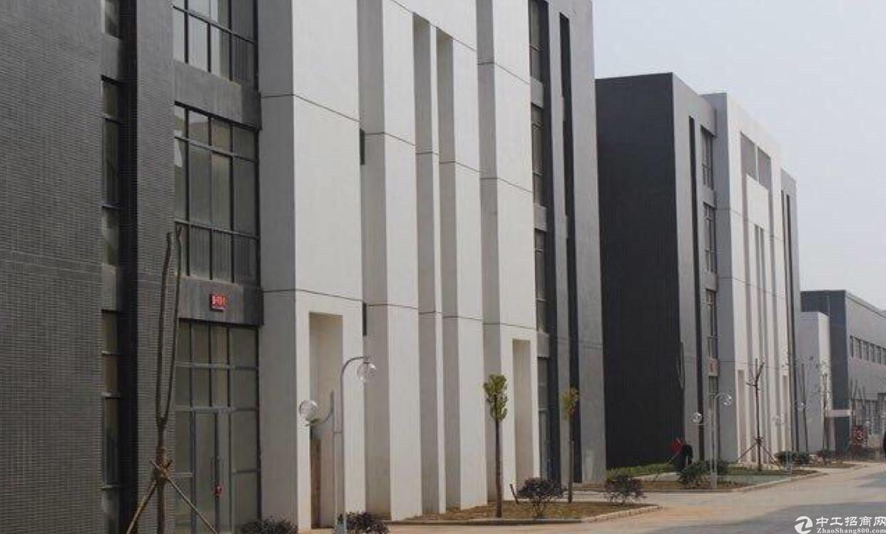 阳逻开发区地铁处工业园厂房优惠价出售