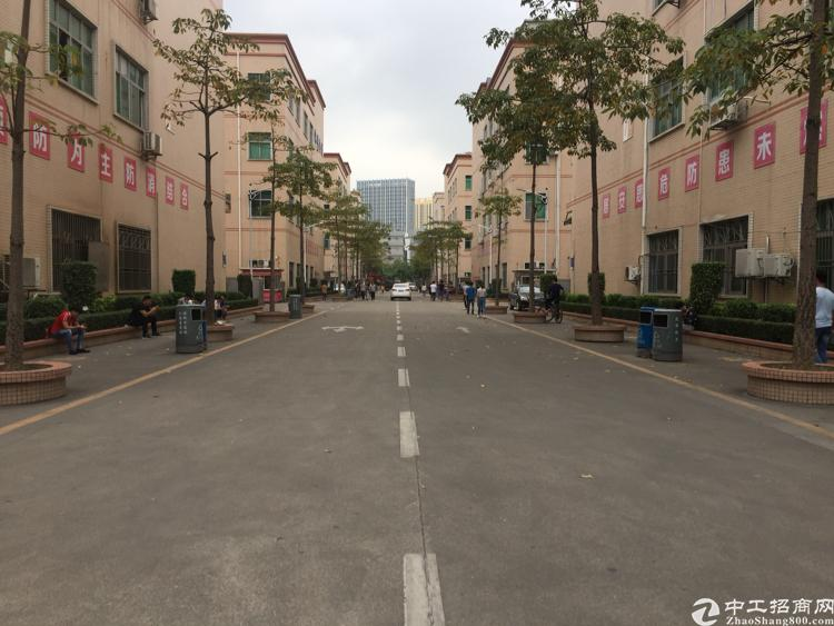 东莞临深独栋标准厂房大小可分出售带国有证