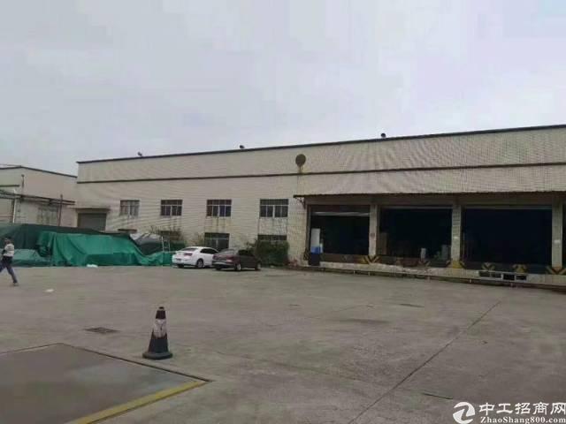 坪山区坑梓砖墙到顶钢结构物流仓库3000平厂房出租