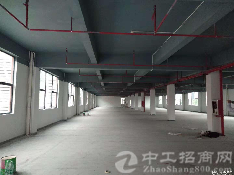 东莞厚街独院15000平方升级改造完工,全新形像,靠近地铁站