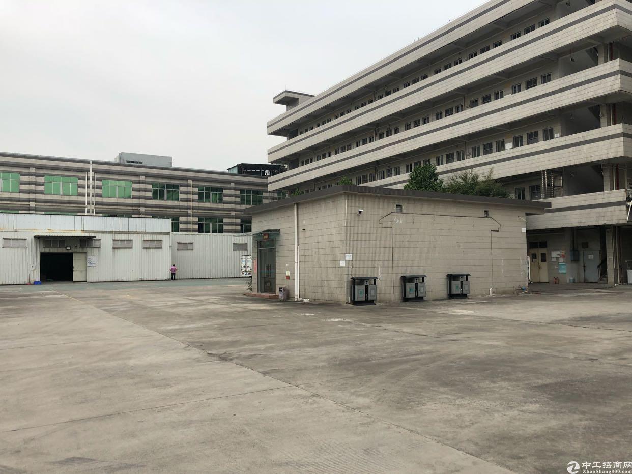虎门龙眼十路原房东独院厂房出租6000平方米、精装修