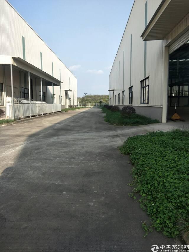 简阳独门独院6000平厂房出租,门槛低,手续齐全