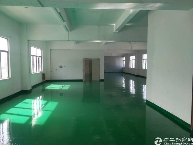 凤岗镇竹塘新出4楼720平方全新地坪漆装修