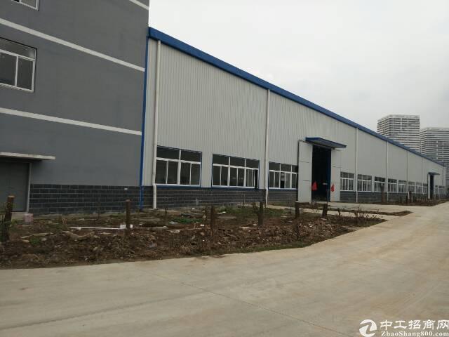 宏图大道独栋钢结构厂房。5000方。可以生产。加工。仓储物流