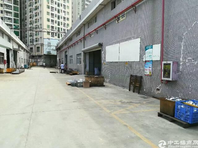 公明上村独栋钢结构厂房800平米直租23元