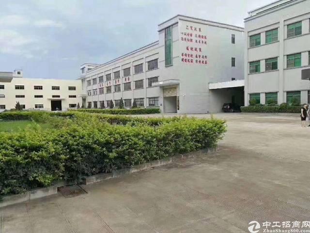 光明南光高速出口原房东独院16800平方出租