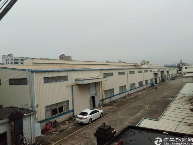 平湖富民工业区新出独院钢构厂房1500平方,7米高