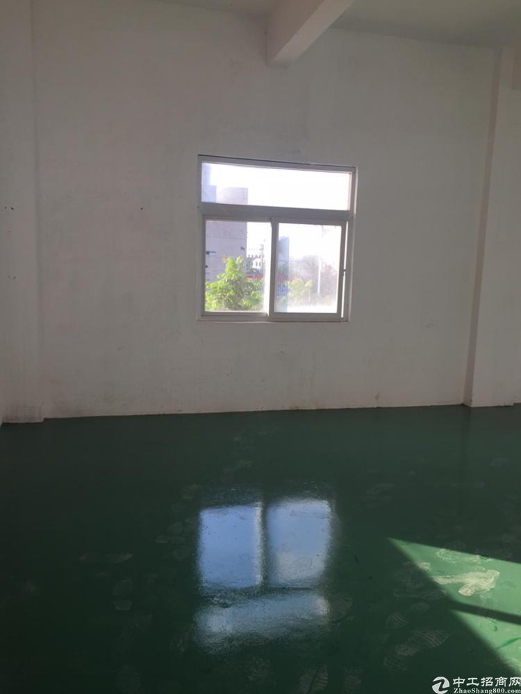 凤岗镇原房东厂房楼上750平带地坪漆办公室