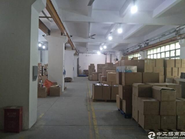 油松大型工业园、红本厂房一楼1200平米,适合物流仓库快递
