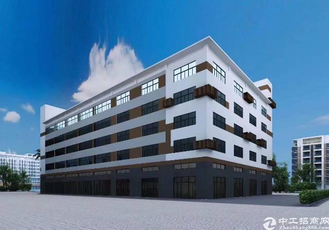 龙华汽车站旁边精装办公楼招租,大小面积可分